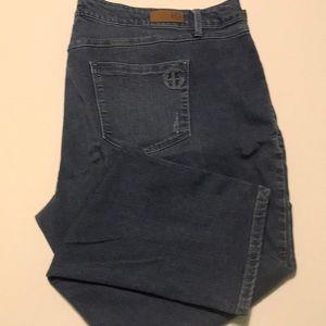 Laurie Felt /Jeans/Skinny/Medium Wash/ Size 3X